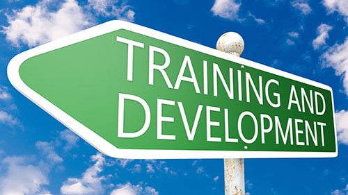 thesis topics on training and development Phd thesis, indiana university of pennsylvania  impact of networked schools  on professional development activities as perceived by texas educators of the.